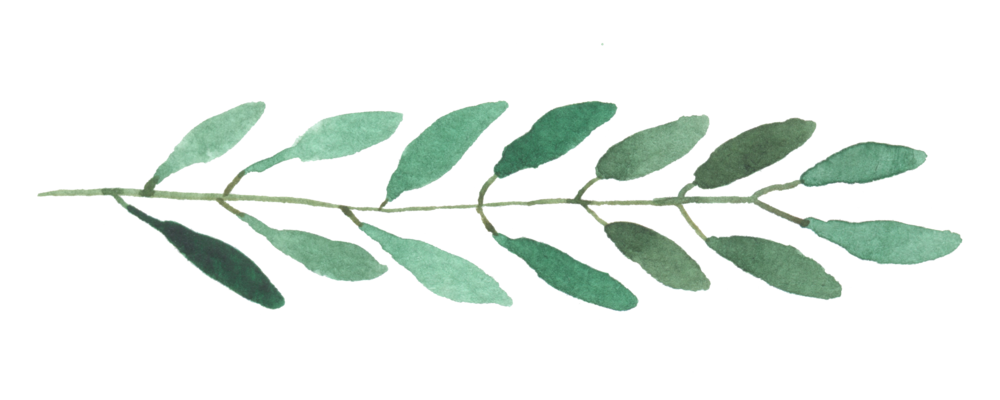 leaves15.png