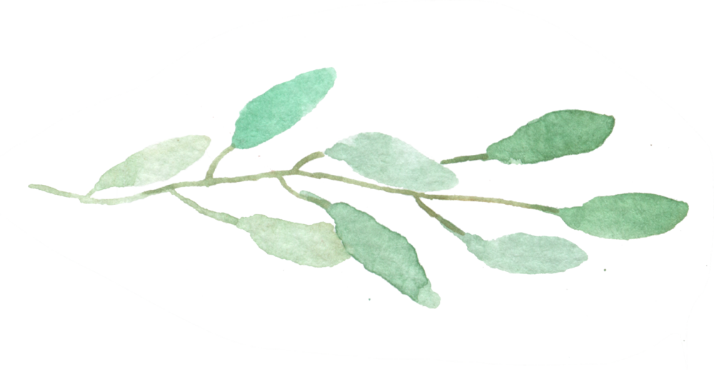 leaves arrangement1.png