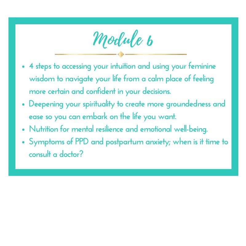 Module 6.png