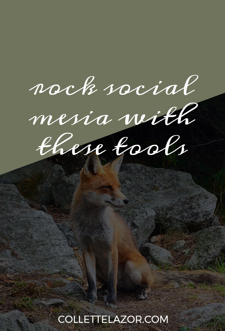Rock Your Social Media with These Tools | A Guest Post on Tell Me Tuesday
