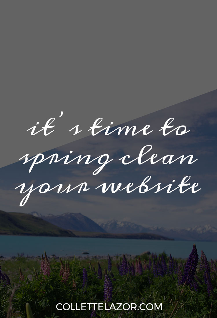 It's Time to Spring Clean Your Website! Read this blog post for simple and actionable ways to give your website a refresh this spring. @collettelazor