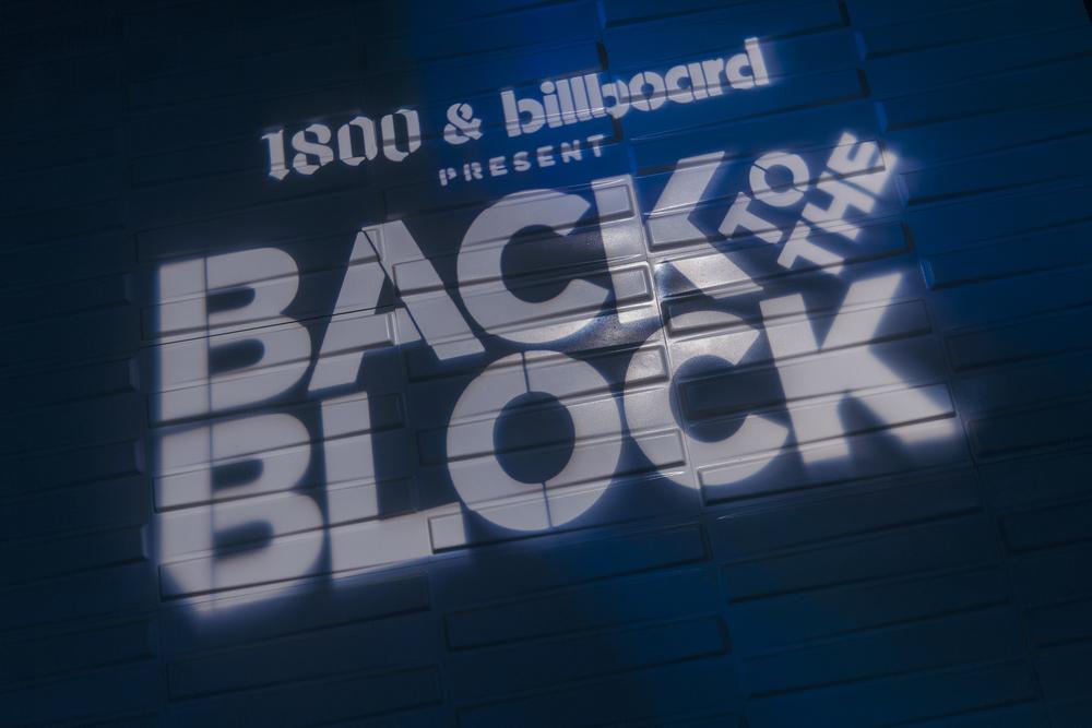 160516 BILLBOARD BACK TO THE BLOCK W TRAVIS SCOTT 0081.jpg