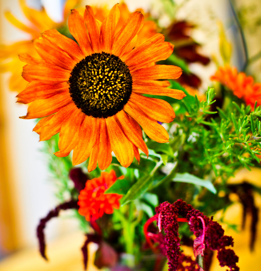 RZ flowers.jpg