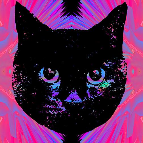 CAT GLITCH