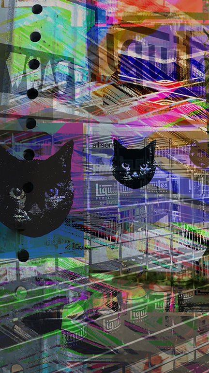 CAT HYBRIDS