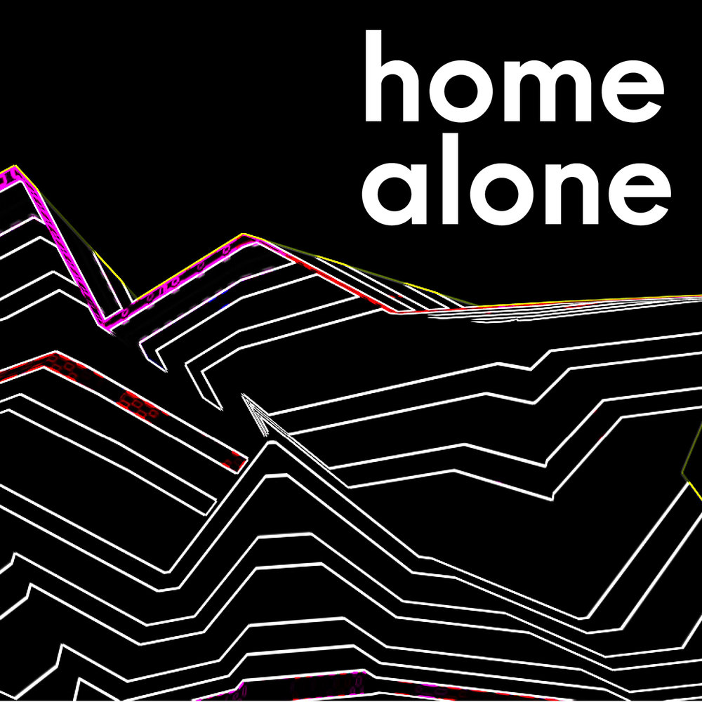 Home Alone_6.jpg