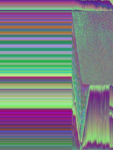 IMG_2491.jpg