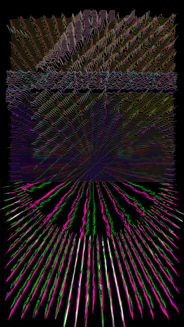 IMG_2311.jpg