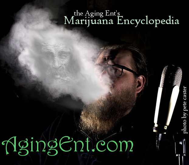 Strain reviews, podcasts, nugporn and more, only at www.agingent.com