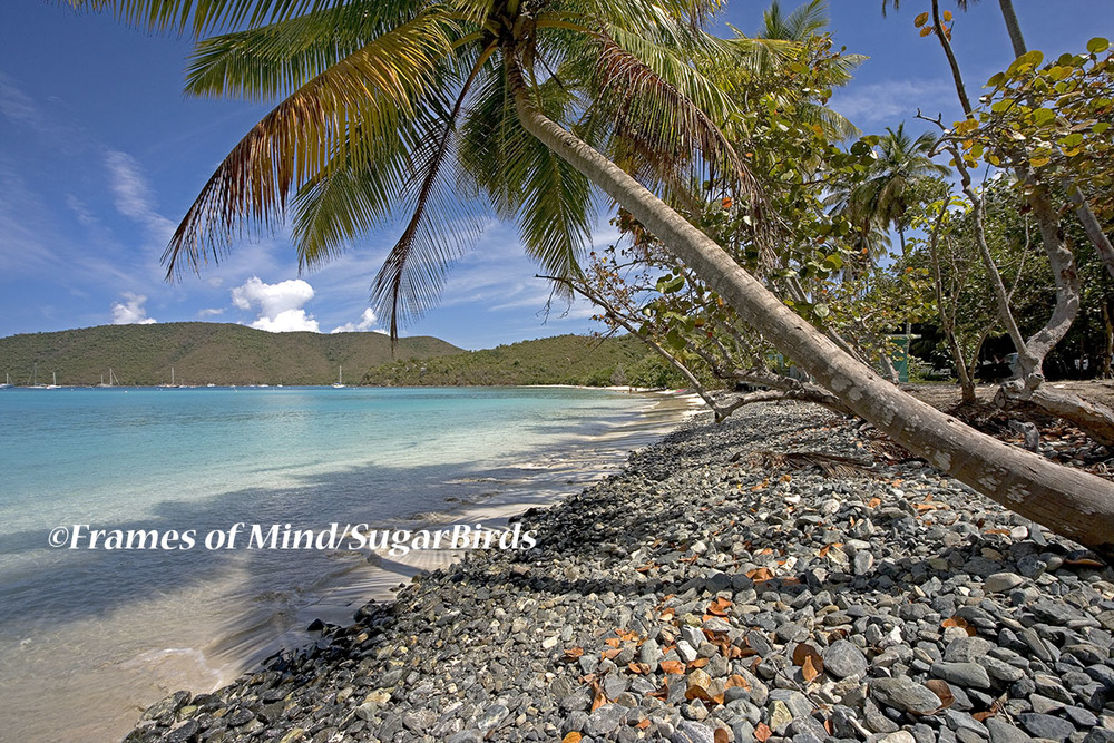 Maho Bay, St. John, USVI