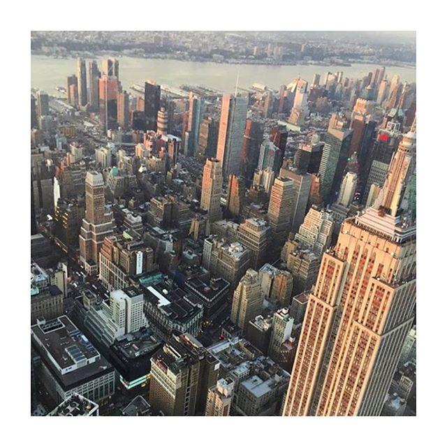 🇺🇸 #Gotham  ___________________________________  #mepadi #squareneck