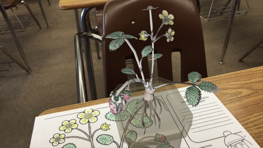 Demonstrating the parts of a plant with augmented reality app Chromville Science.