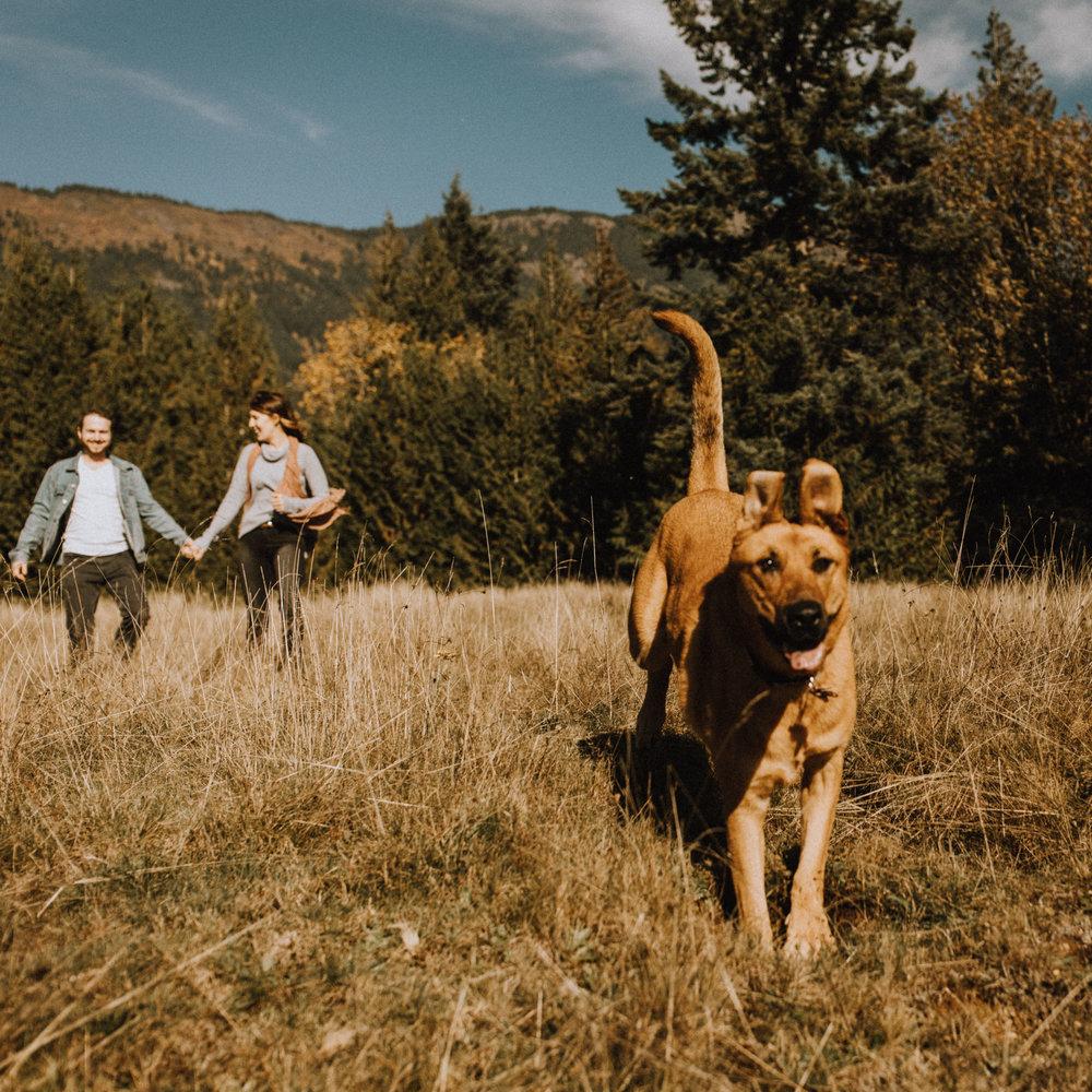 the mclachlans - kyla and phils chilliwack lake engagement photos-4.jpg