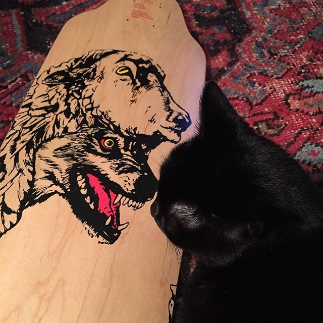 Joypulp Illustrator @wellingtonsun's kitty 'mirin. W.I.L.D deck Available for order on our website (link in bio 👆)