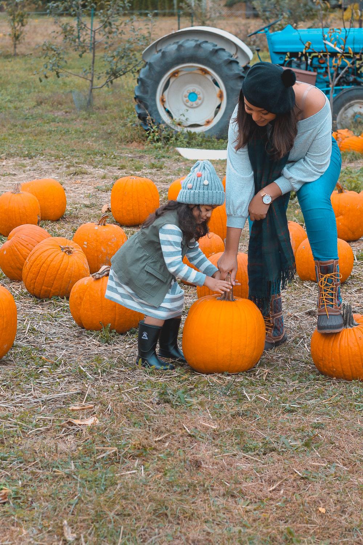 Pumpkin Picking-2.jpg
