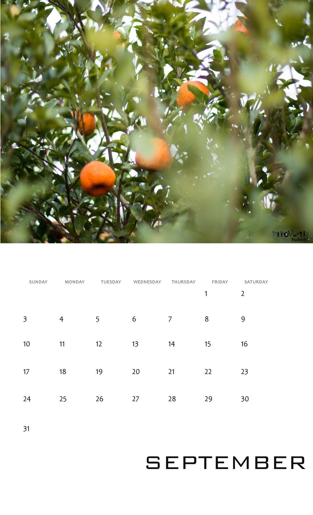 Calendar 2017-page-009.jpg