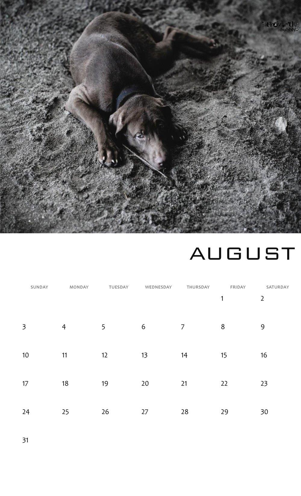 Calendar 2017-page-008.jpg