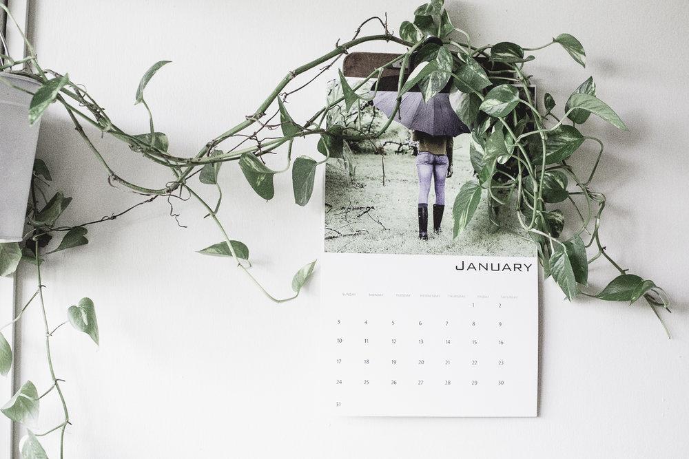 January 2017-13.jpg