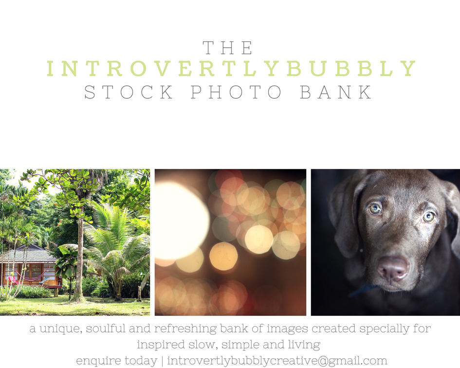 the IntrovertlyBubbly Stock-photo Bank