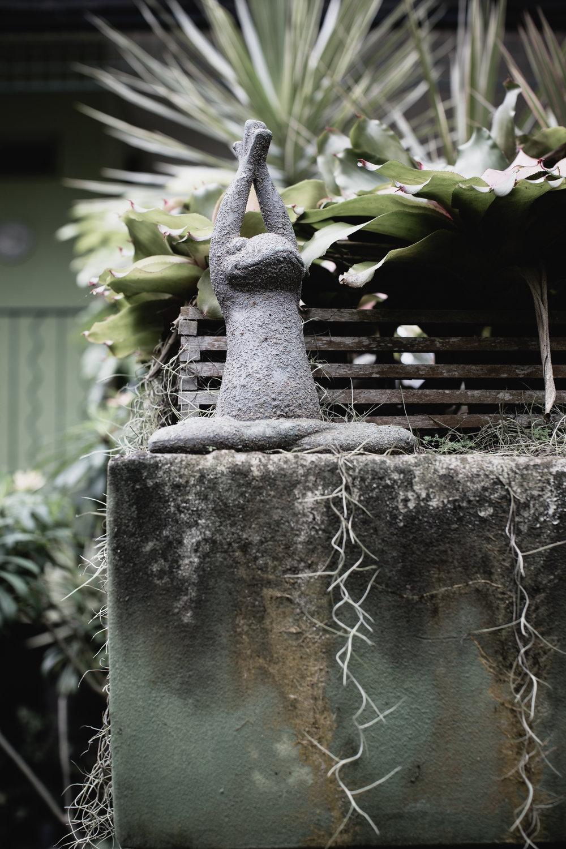The Secret Garden-24.jpg