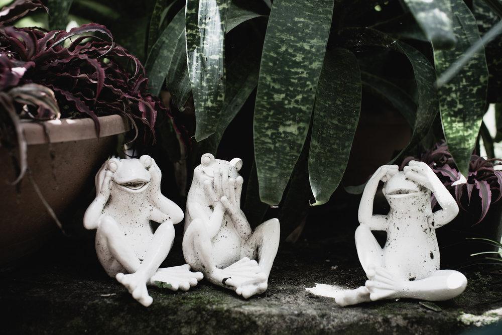 The Secret Garden-22.jpg