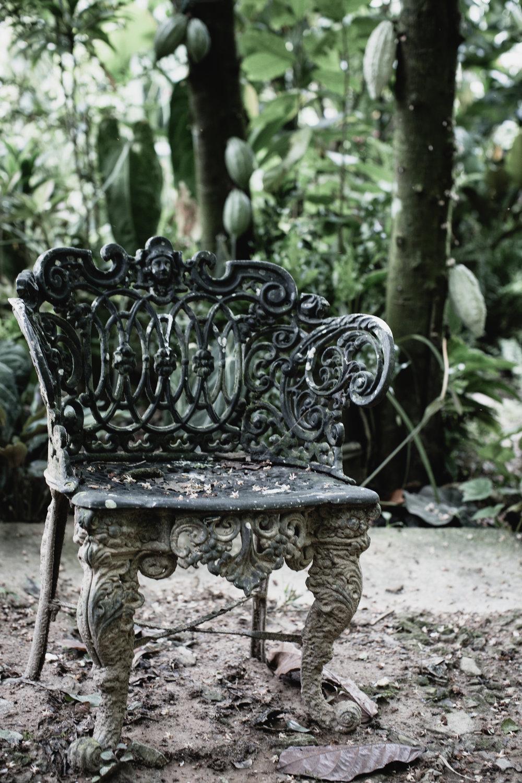 The Secret Garden-8.jpg