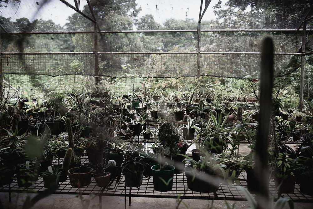 Garden Club w the De Verteuils-10.jpg