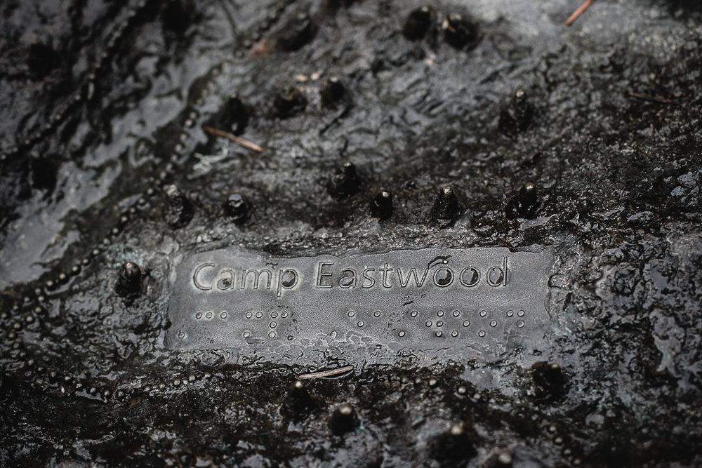 Muir Woods-52.jpg