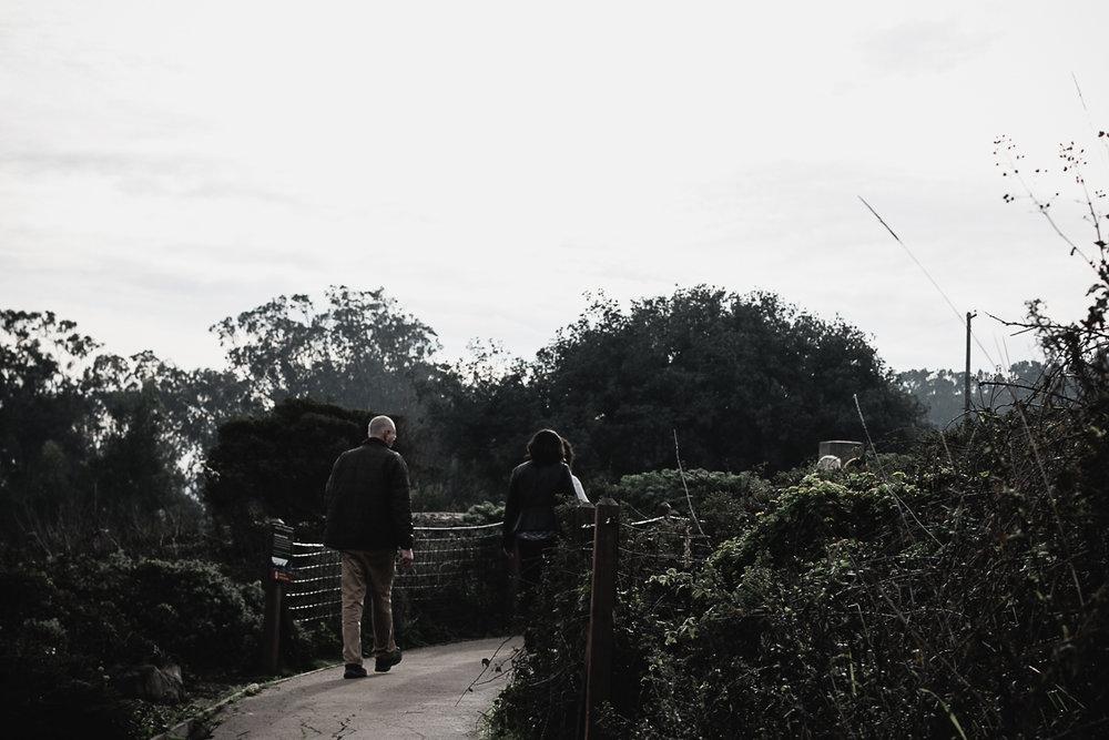 Muir Woods-16.jpg
