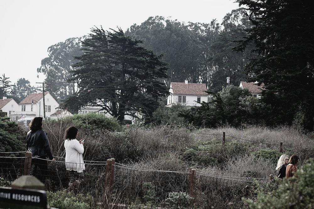 Muir Woods-17.jpg
