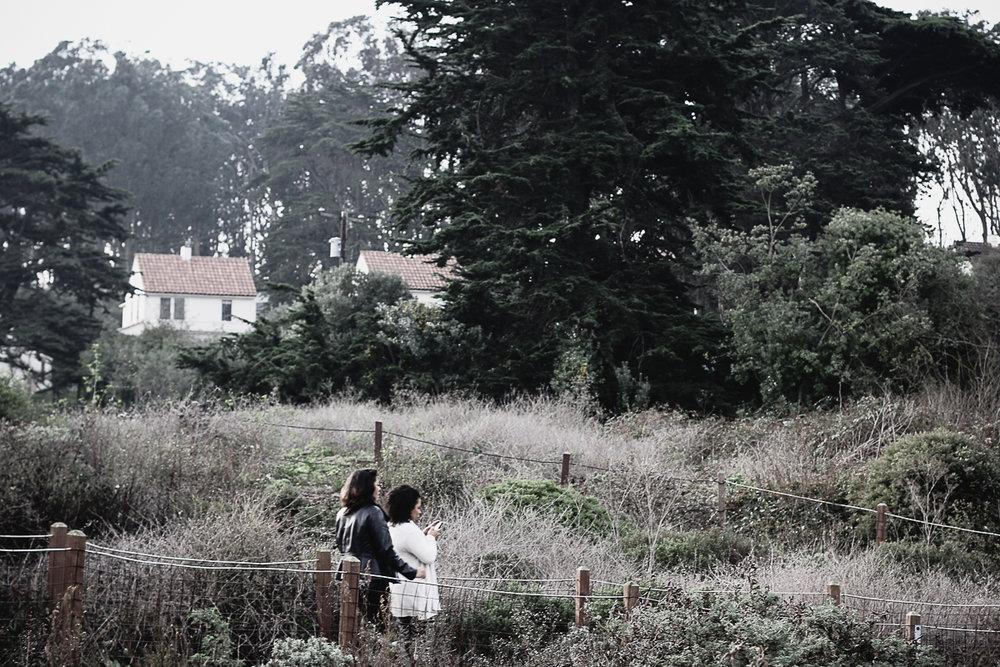 Muir Woods-19.jpg