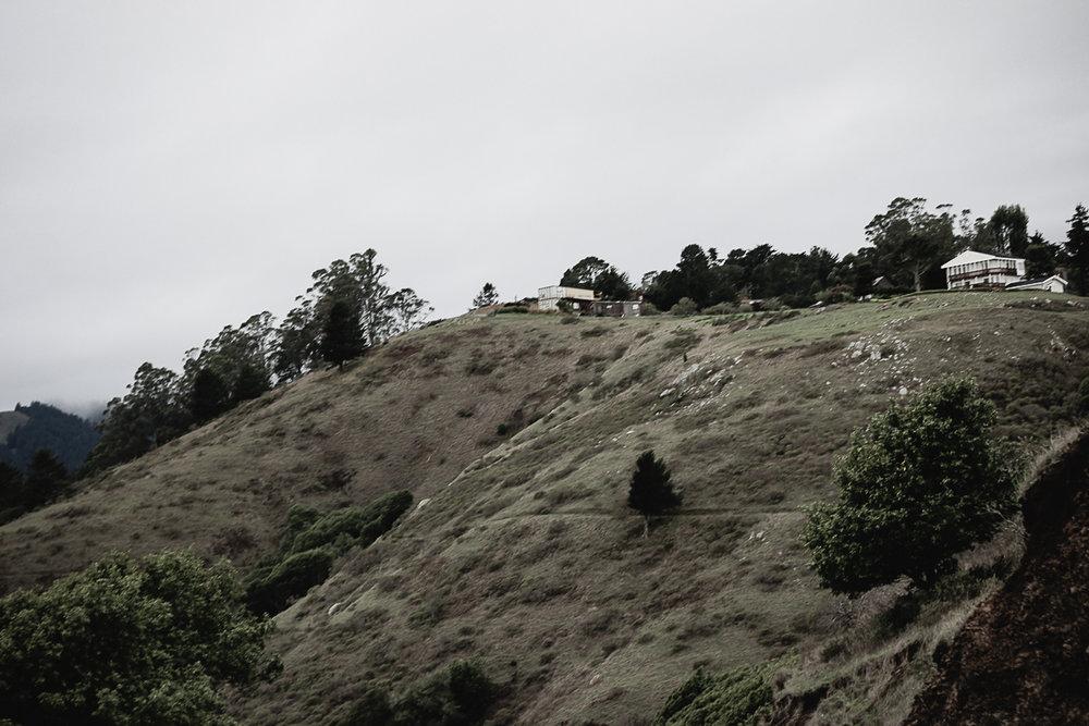 Muir Woods-34.jpg