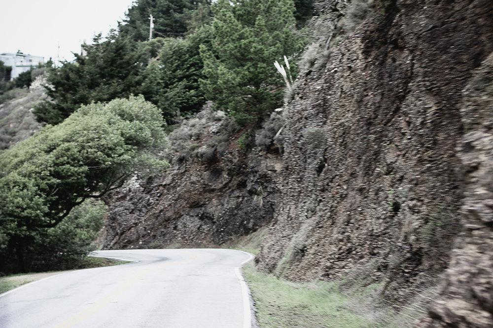 Muir Woods-36.jpg