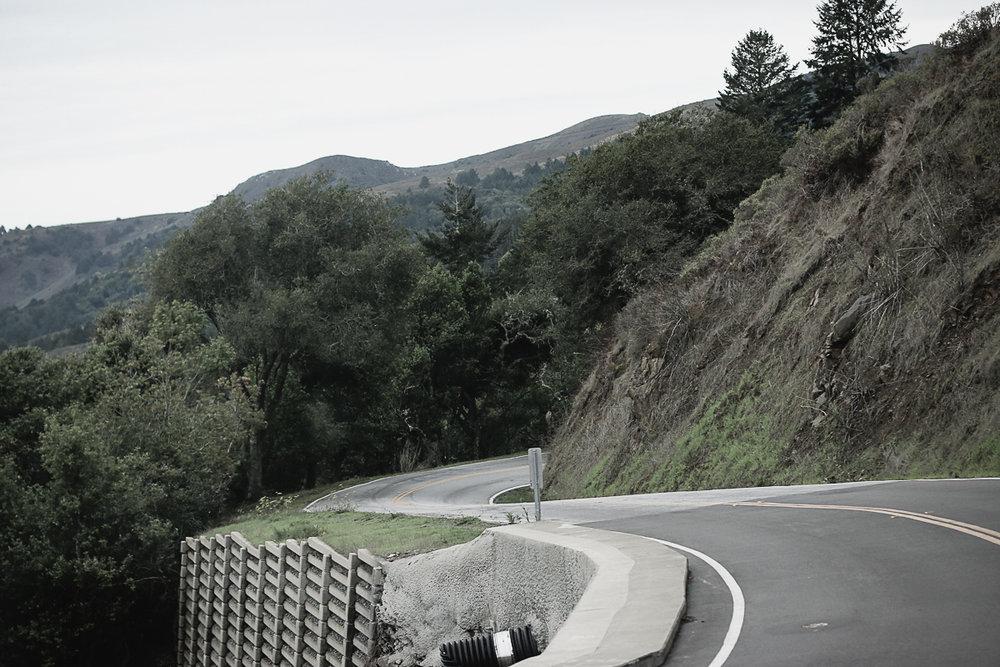 Muir Woods-38.jpg