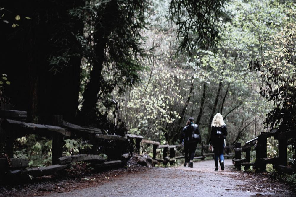 Muir Woods-64.jpg