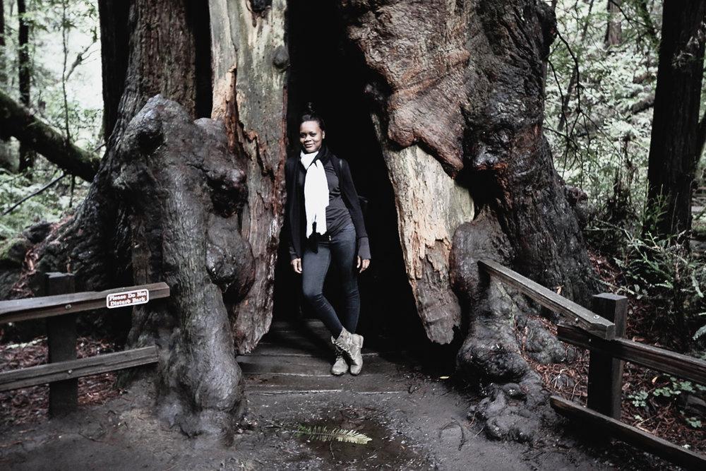 Muir Woods-84.jpg