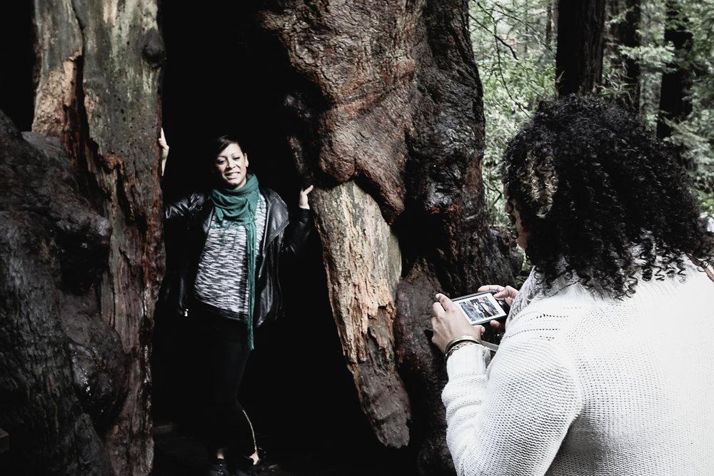 Muir Woods-87.jpg