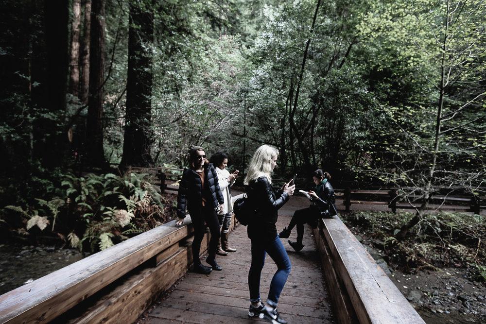 Muir Woods-100.jpg