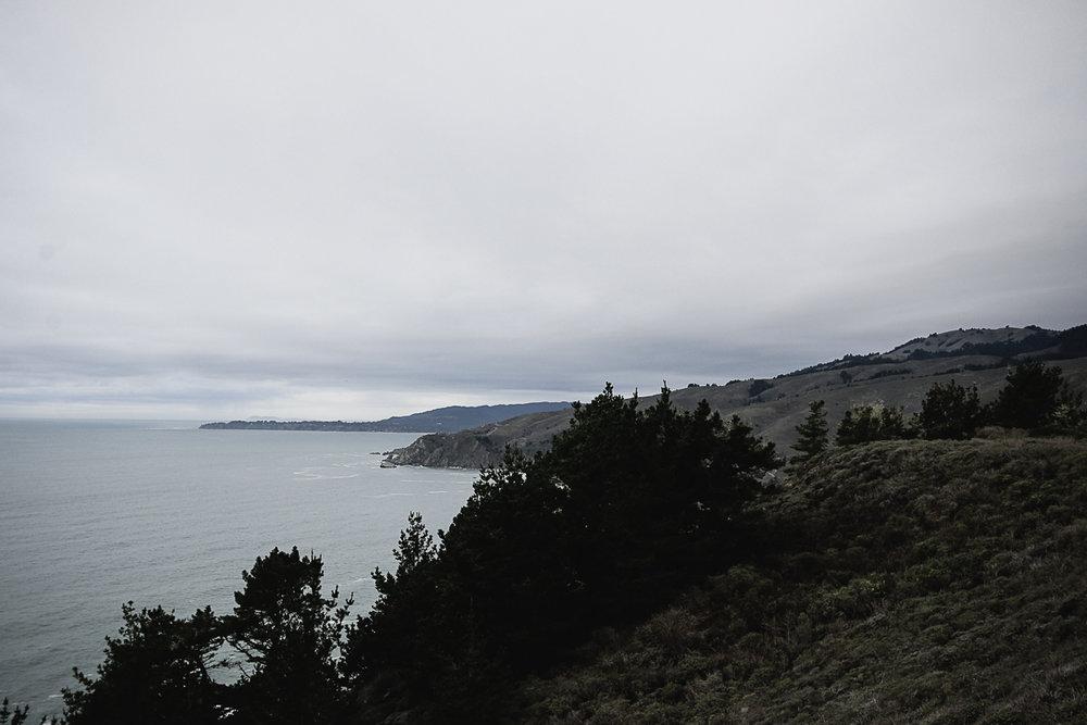 Muir Woods Lookout-2.jpg