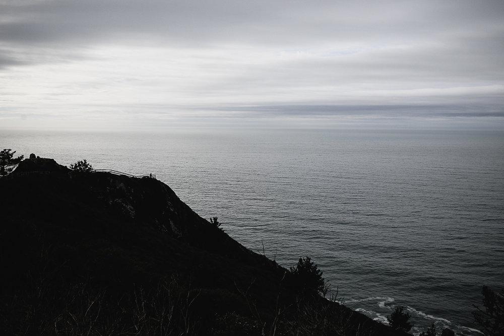 Muir Woods Lookout-4.jpg