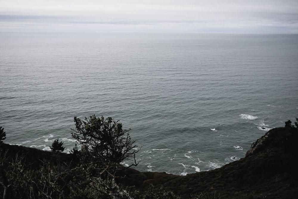 Muir Woods Lookout-3.jpg