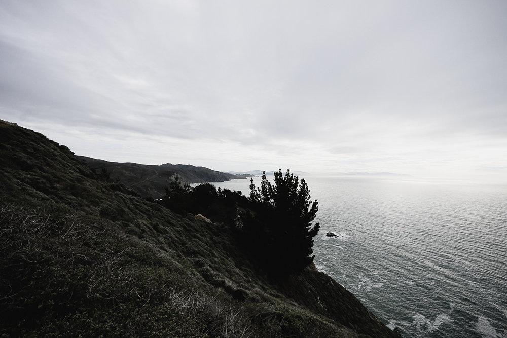 Muir Woods Lookout-19.jpg