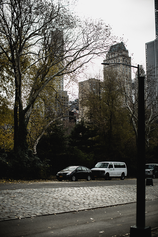 NEW YORK 2017-5.jpg