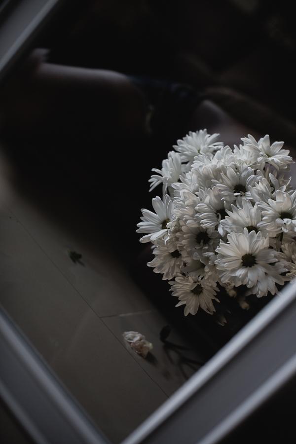 Flowers Daisy-9.jpg