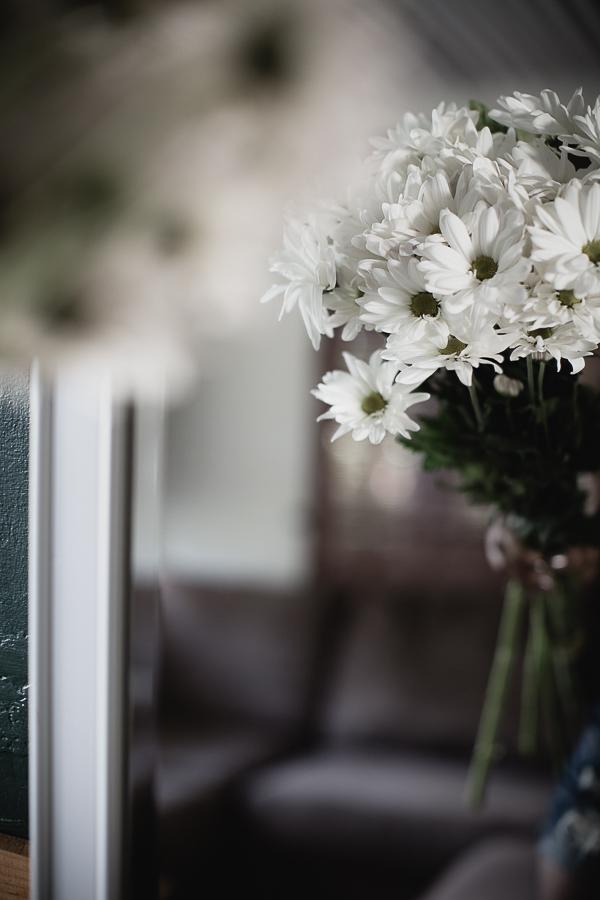 Flowers Daisy-3.jpg