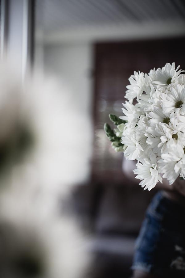 Flowers Daisy-2.jpg