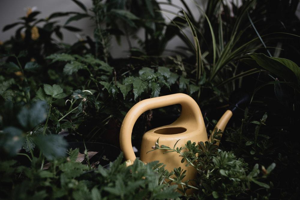 Garden Club Feb 2018-23.jpg