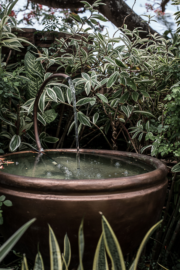 The Garden Club of Trindad May 2018-25.jpg
