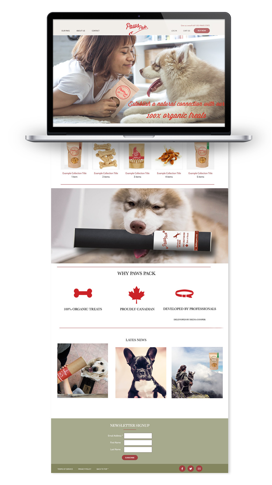 Web site design  and social media stratedy for PawsPak(hold my paws)