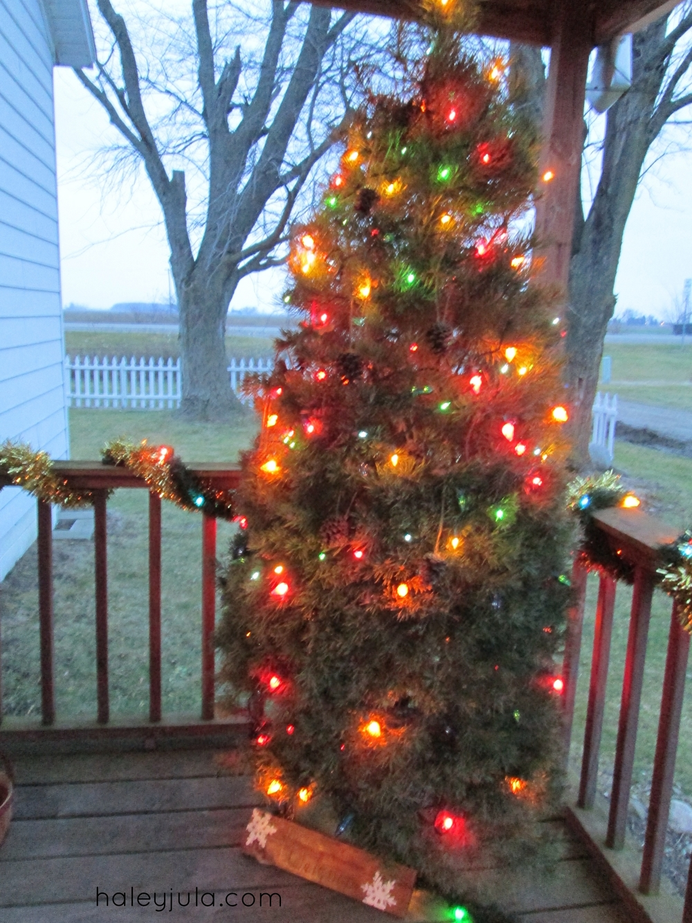 Color lights on our porch tree this year :)